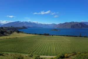 Wanaka Harcourts real estate