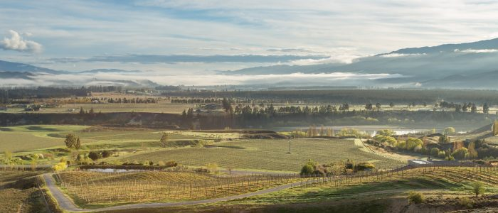 central otago property