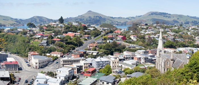 dunedin-property-buyers