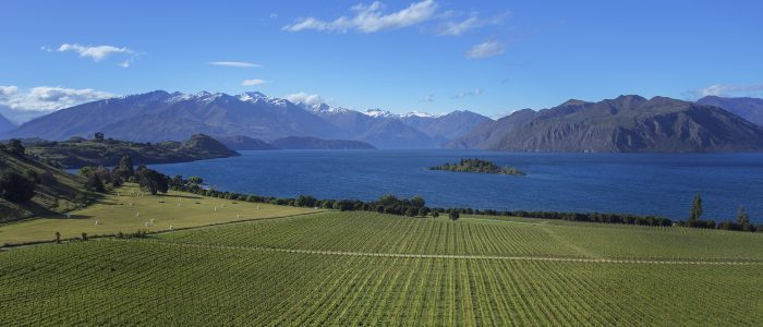 wanaka-buy-sell-property