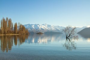 winter lake wanaka